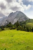 Top Of The Grosser Donnerkogel Mountain In Alps, Gosau, Gmunden District, Upper Austria Federal Stat poster
