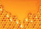 pic of honey bee hive  - illustration of flowing honey on honeycomb background - JPG