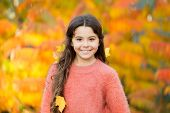 Autumn Brings Happiness And Joy. Happy Little Girl Wear Autumn Leaves In Hair. Small Child Happy Smi poster