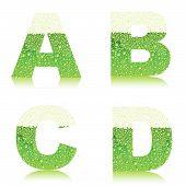 Alphabet_green_beer_abcd