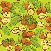 foto of hazelnut tree  - Seamless pattern with highly detailed hand drawn hazelnuts on green background - JPG