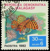 Malagasy - Circa 1982:stamp Shows Image Of A Pterois Volitans, Circa 1982