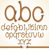 Rope Font. Vector Set of Isolated Alphabet Letters made from Braided Cord.