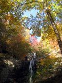 image of asheville  - Waterfall during autumn foliage near Asheville North Carolina  - JPG