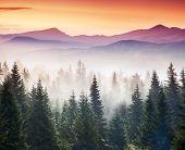 Majestic morning mountain landscape with colorful cloud. Dramatic sky. Carpathian, Ukraine, Europe. Beauty world.