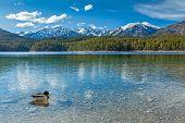 Eibsee lake. Bavaria, Germany