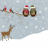 stock photo of snow owl  - Christmas card a branch with owls and birds and a deer - JPG