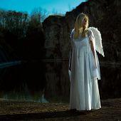 Angel In Dark