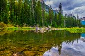 Cascade Creek - Grand Teton National Park