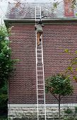 foto of step-ladder  - Man Carrying Slate up Ladder - JPG