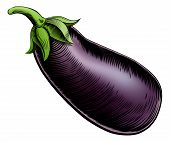 stock photo of brinjal  - A brinjal eggplant aubergine vintage woodcut illustration in a vintage style - JPG