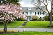 picture of manicured lawn  - Colonial revival style  - JPG