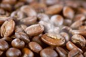 stock photo of spit-roast  - Roasted coffee beans with steam - JPG