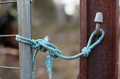 Blue Rope