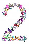 Number Two Composed By Butterflies