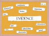 Evidence Corkboard Word Concept