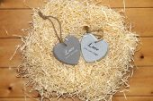 Couple Of Wooden Heart In A Hot Love Nest