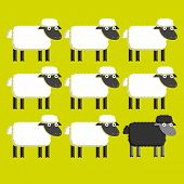 Vector Group Of White Sheep And A Black Sheep