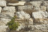 Texture of stone wall.