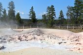 Mud Pool, Yellowstone