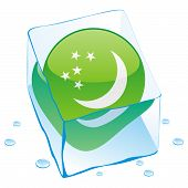 vector illustration of turkmenistan button flag frozen in ice cube