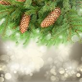 picture of merry chrismas  - chrismas tree and pine cones on gray festive background with sparkles