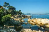 Coast Of The Ile Saint Honorat