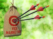 Web Marketing - Arrows Hit in Red Target.