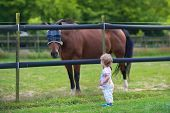 Adorable Little Baby Girl Playing With A Horse On A Farm In Summer