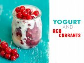 Jars Of Red Currants And Fresh Yogurt