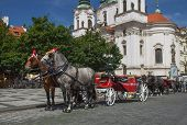 Horse-drawn Carriage Ready For Tourists. (prague, Czech Republic)