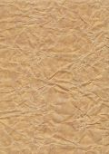 Grunge Texture - Crumpled Paper