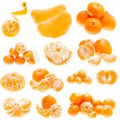 Fresh Mandarin Citrus Isolated Tangerine Mandarine Orange In Heap On White Background. Set, Collage