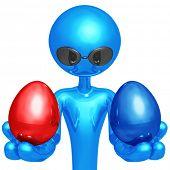 Red Or Blue Nest Egg