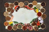 Spice and herb abstract border over parchment and lokta paper background.