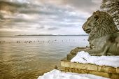 picture of bavaria  - An image of the lions at Tutzing Bavaria Germany - JPG