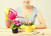 lovely housewife with flower in pot and watering can