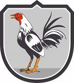 Cockerel Rooster Standing Shield Retro