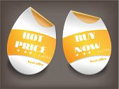 Two isolated labels with text Hot Price, Buy Now