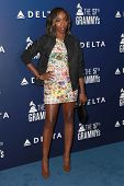 LOS ANGELES - FEB 5:  Estelle at the Delta Air Lines Toasts 2015 GRAMMYs at a SOHO House on February 5, 2015 in West Hollywood, CA