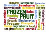 Frozen Fruit word cloud on white background