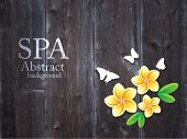 Spa abstract background. Vector.