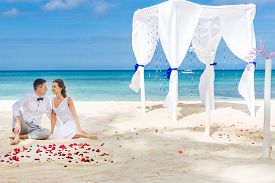 stock photo of cabana  - young loving couple on their wedding day - JPG