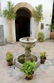 Palacio De Viana - Typical Andalusian Patio