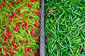 picture of chillies  - Colorful chillies for sale at market - JPG