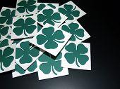 Four Leaf Clovers Cards On Black