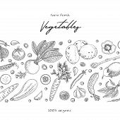 Organic Food Design Template. Fresh Vegetables. Hand Drawn Illustration Frame With Vegetables. Eco O poster