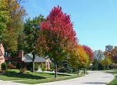 House in subdivision and landscape in autumn