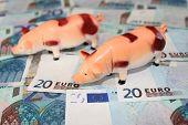 Field Of Euros