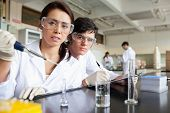 Young science students working in a laboratory